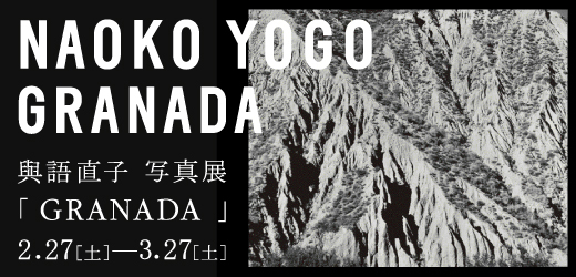 yogo_banner.jpg